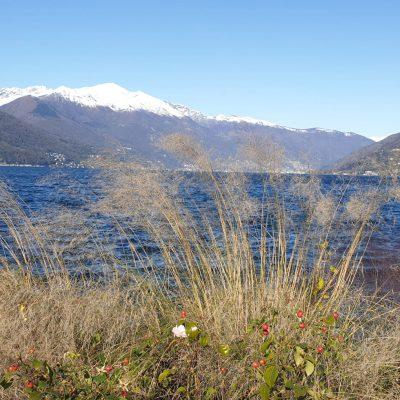 Seeblick Berge Schnee